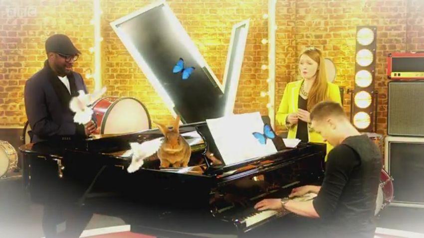 The Voice UK 2015 - BBC