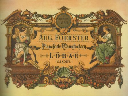 August Förster Transfer